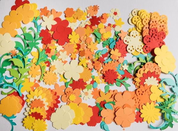 Floraria - set creativ 0