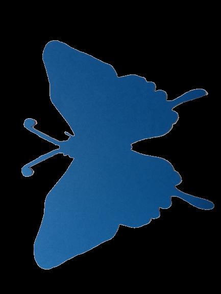 Fluture 18 cm 3