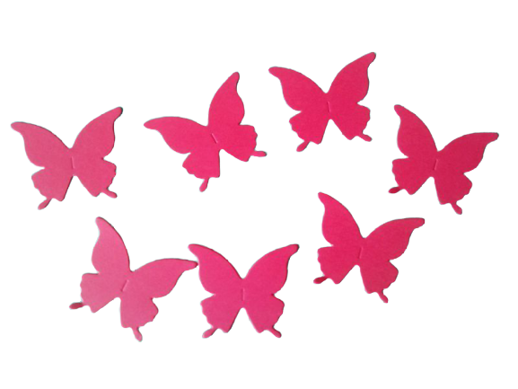 Fluturi coloraţi 0