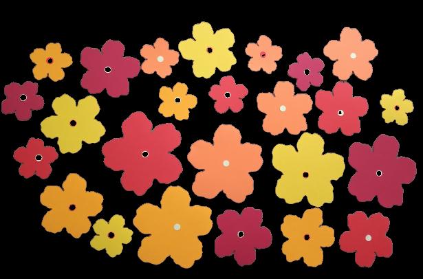 25 flori mari carton 0