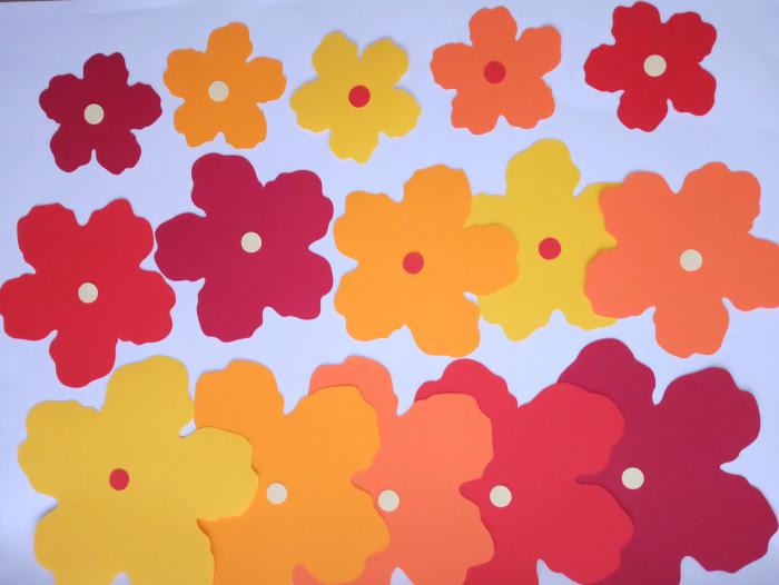 25 flori mari carton 2