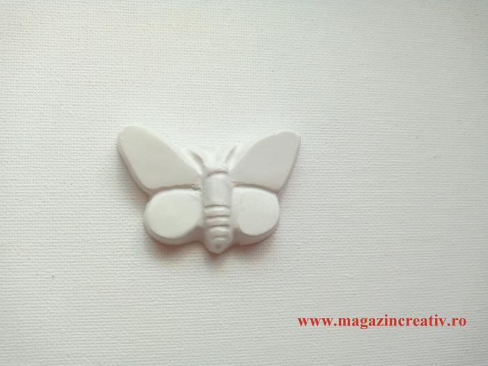 Fluture 5,5 cm [0]