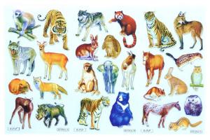 Sticker reutilizabil la set - animale0