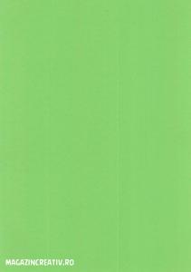 Carton color - 20 coli A42