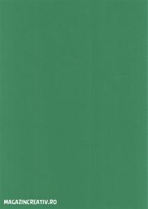 Carton color - 20 coli A40