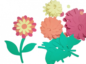 Crizantema - set creativ 10 bucati0