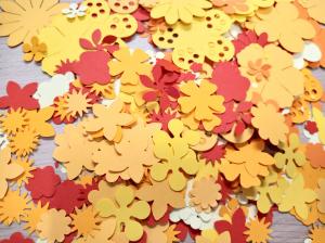 Floraria - set creativ2