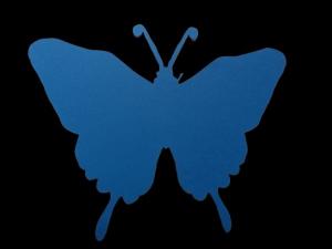 Fluture 18 cm2