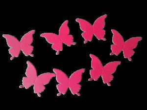 Fluturi coloraţi1