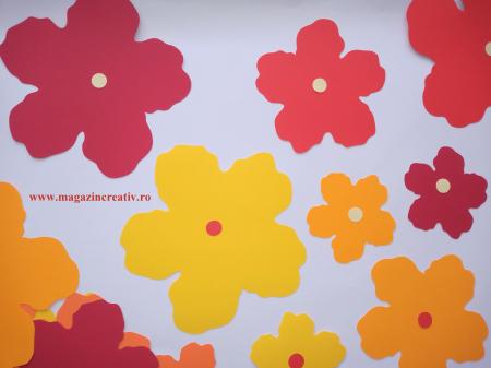 25 flori mari carton1