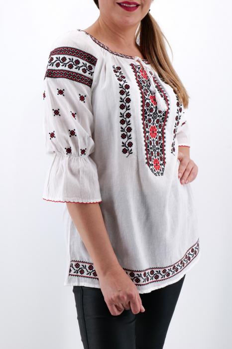 Ie Traditionala Dobrina [3]