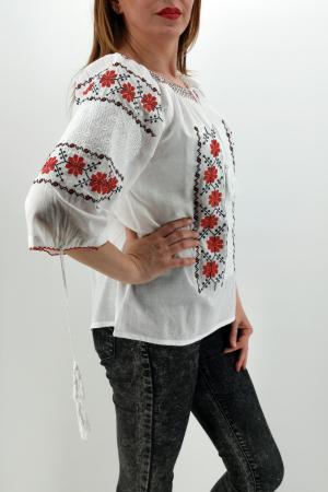 Ie Traditionala Briana2