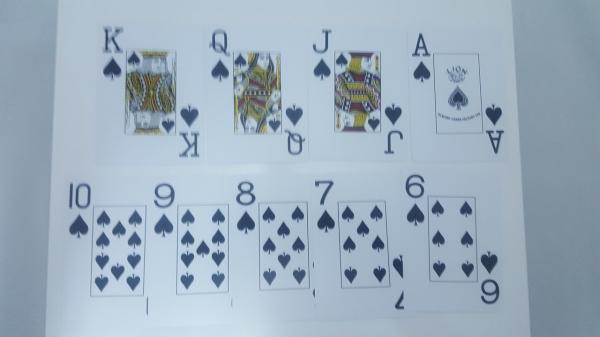 Carti de joc 100% plastic, jumbo index - double deck 1