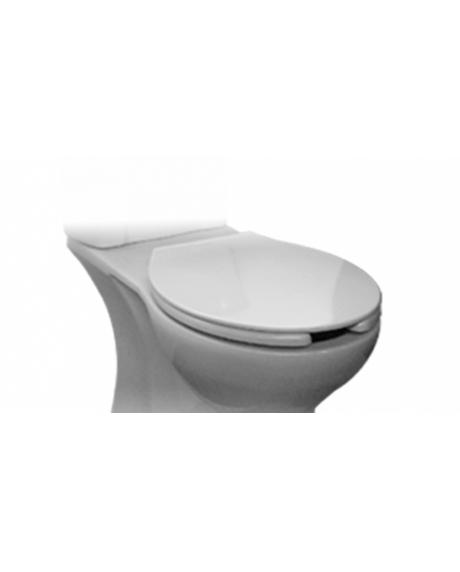 Capac pentru vas wc cu functie bideu-big