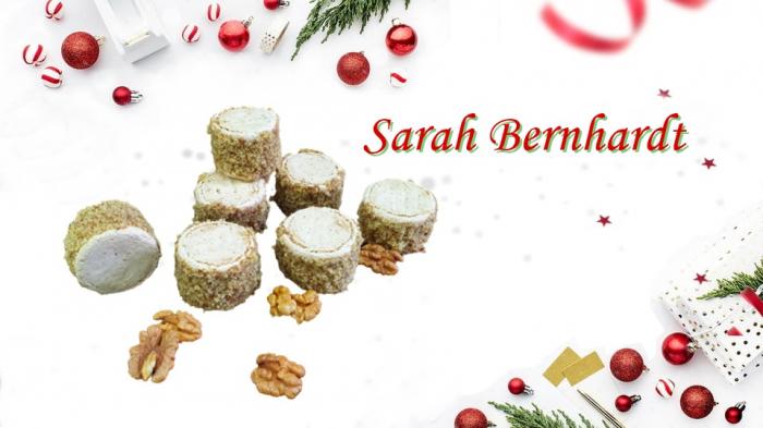 Sarah Bernhardt 0
