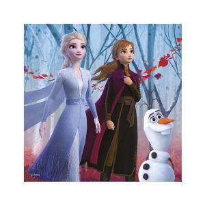 Puzzle 3 in 1 - Frozen II (3 x 55)3