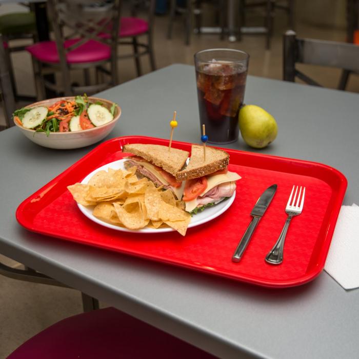 Tava servire fast food 34x24 cm, rosie 1
