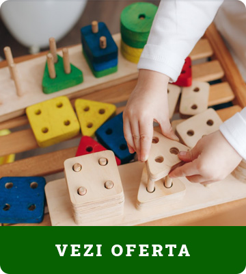 Jucarii din lemn si Montessori