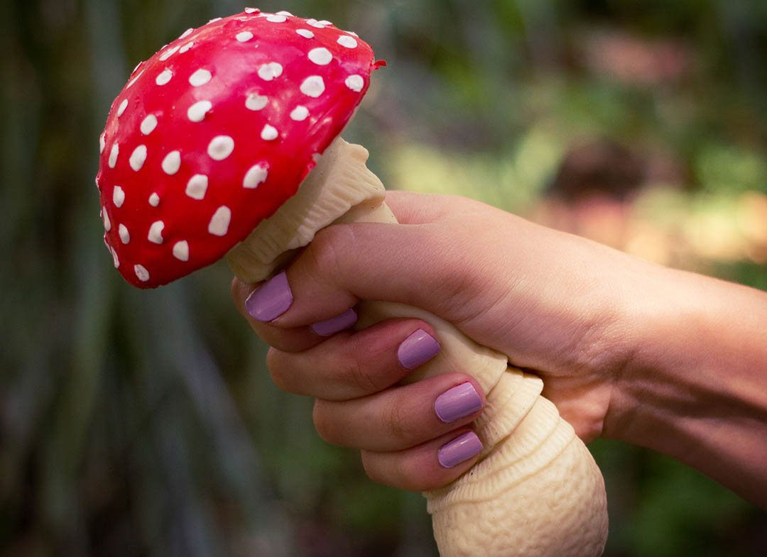 Ciuperca-antistres
