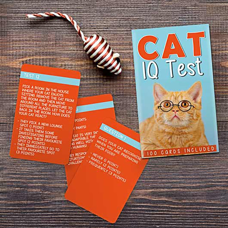 IQ Test pentru pisici