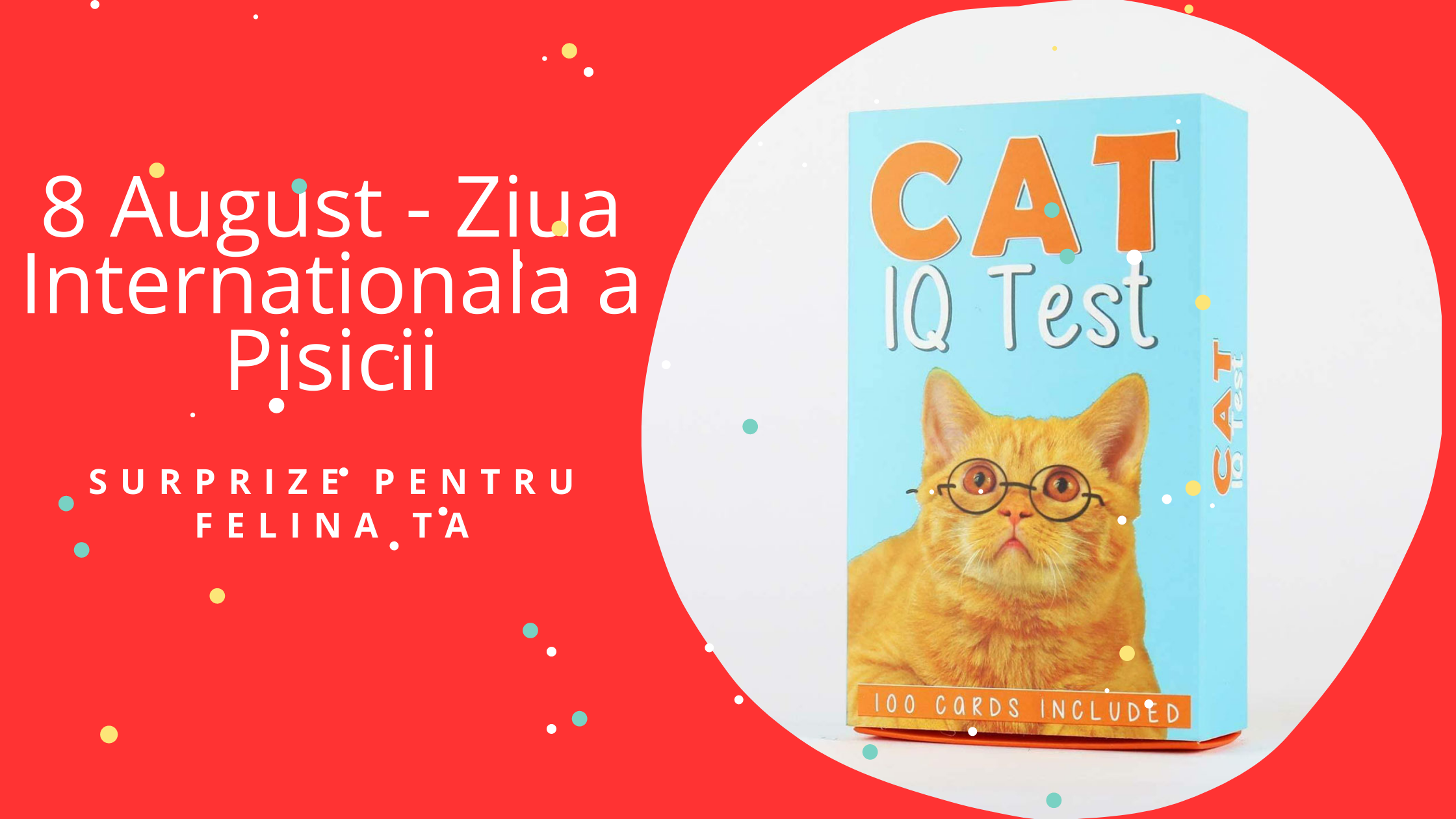 8 August - Ziua Internationala a Pisicii