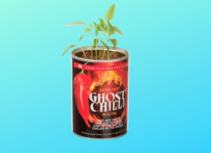 Grow your Chilli, Super HOT - Pret avantajos | MindBlower.ro 0