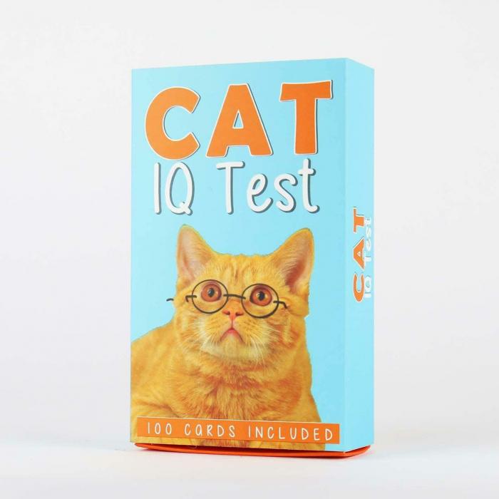 IQ Test pentru pisici 2