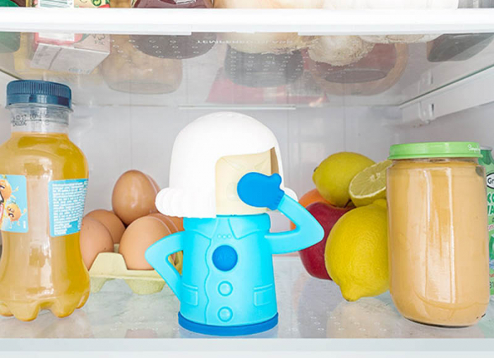 Soacra pentru frigidere 0