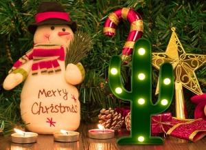 Lampa de Veghe LED Cactus7