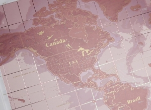 Harta razuibila Rose Gold - Originala Luckies [9]