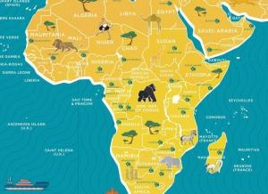 Harta Razuibila Wild - Originala Luckies3