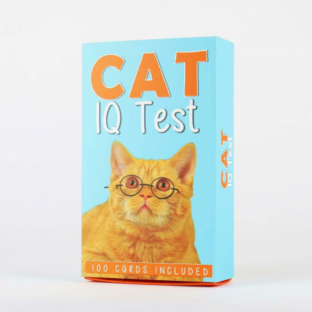 IQ Test pentru pisici2