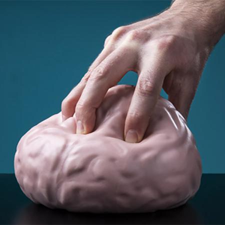 Jucarie antistres Creierul urias0