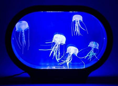 Lampa ovala cu meduze2