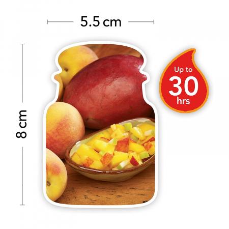 Lumanare parfumata Yankee Candle mango peach salsa Borcan mic2