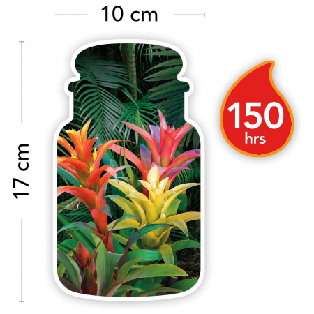Lumanare parfumata Yankee Candle tropical jungle Borcan mare3