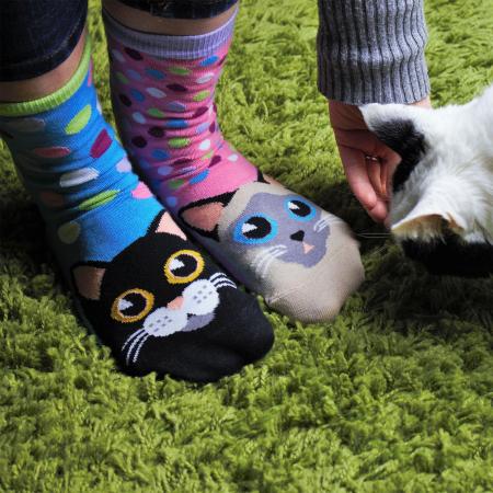 Set 6 Sosete cu Pisici PurrFecte
