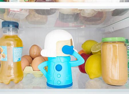Soacra pentru frigidere0