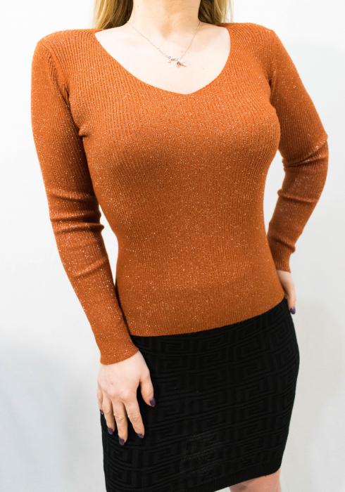 Bluza Alisia Brown 0