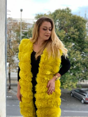 Vesta Gloria Yellow [0]