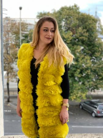 Vesta Gloria Yellow [4]