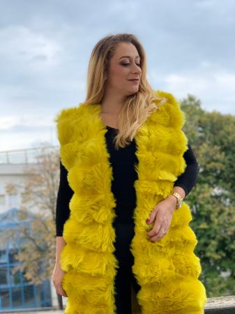 Vesta Gloria Yellow [2]