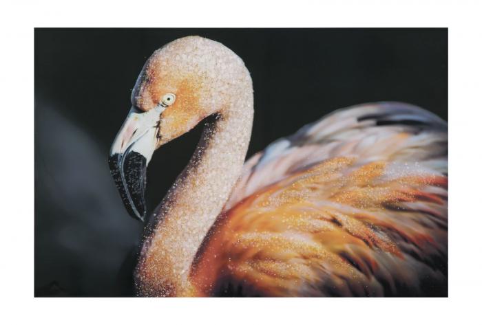 Pictura pe panza Flamingo Dark [2]