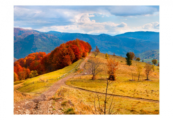Fototapet - Autumn landscape in the Carpathian mountains 3