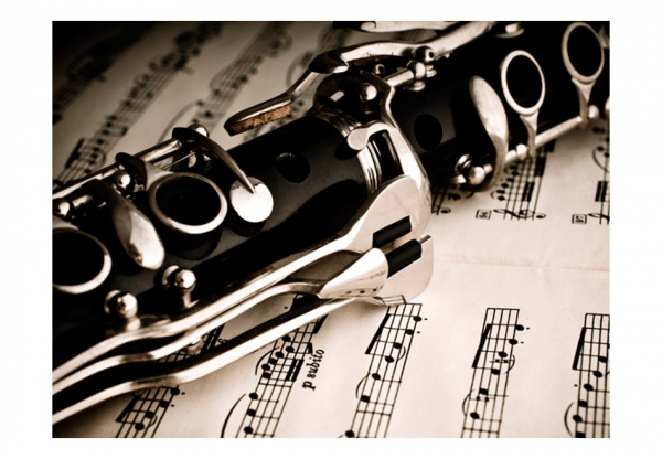 Fototapet - Clarinet and music notes 3
