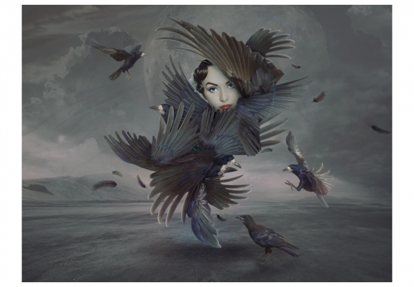Fototapet - Covered in feathers [3]