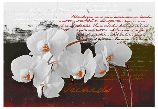 Fototapet - Diary and orchid 3