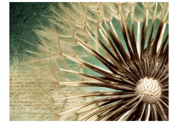 Fototapet - Focus on dandelion 3