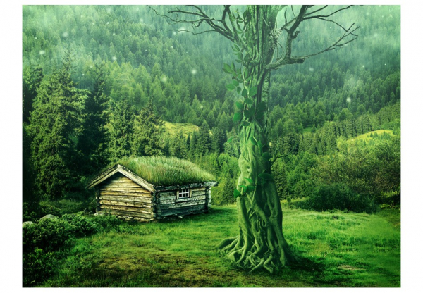 Fototapet - Green seclusion [3]
