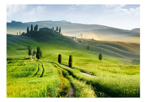 Fototapet - Morning in the countryside 3